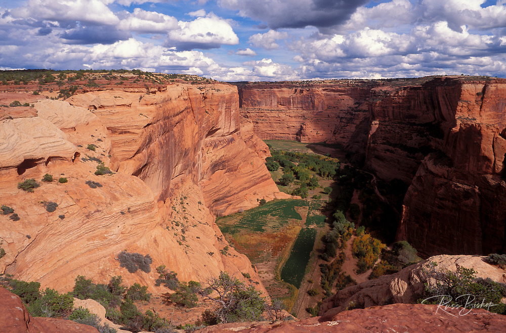 Canyon Del Muerto from the canyon rim, Canyon de Chelly National Monument, Arizona.