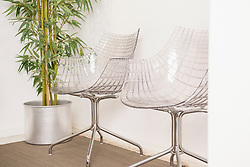 Hospital waiting room with two empty chairs and bamboo plant, Munich, Bavaria, Germany