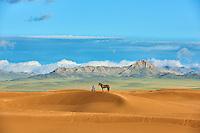 Mongolie, Province de Zavkhan, cavalier mongol dans des dunes de sable dans la steppe mongole // Mongolia, Zavkhan province, Mongolian horserider in the sand dunes