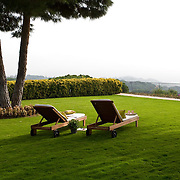 Classic Garden 560