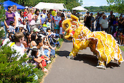 Dancing dragon performing in front of attentive audience. Dragon Festival Lake Phalen Park St Paul Minnesota USA