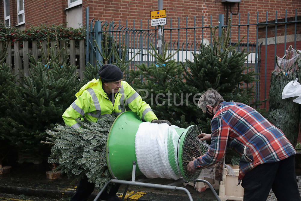 A Christmas tree is wrapped up in Columbia Road Flower Market on 6th of December 2020 in Hackney, London, United Kingdom. The flower market in East London is on all year around for all kinds of plants and flowers but at Christmas time, many come to buy their Christmas trees and decorations for the festive season. The national lockdown 2 has just ended and London is under tier 2. The pandemic is still raging so many wear face masks, even outside, because of the lack of social distancing.