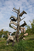 Wellington boot tree, organic community farming project, Devon, UK