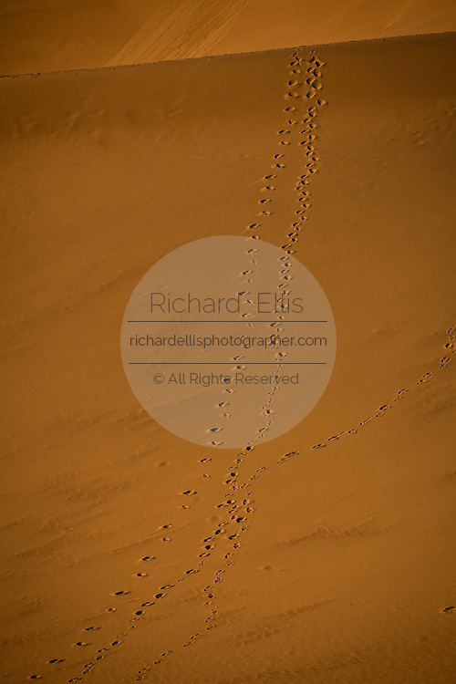 Foot prints on the sand dunes at Stovepipe Wells in Death Valley National Park, California, USA.