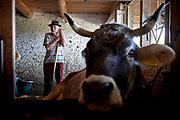 Bauer Michel Seiler von der Staerenegg im Trubschachen setzt sich fuer die Hornkuh-Initiative ein. © Adrian Moser / Tamedia AG
