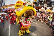 """10 FEBRUARY 2013 - BANGKOK, THAILAND: Chinese Lion dance being performed on Chinese New Year on Yaowarat Road in the Chinatown section of Bangkok. Bangkok has a large Chinese emigrant population, most of whom settled in Thailand in the 18th and 19th centuries. Chinese, or Lunar, New Year is celebrated with fireworks and parades in Chinese communities throughout Thailand. The coming year will be the """"Year of the Snake"""" in the Chinese zodiac.    PHOTO BY JACK KURTZ"""