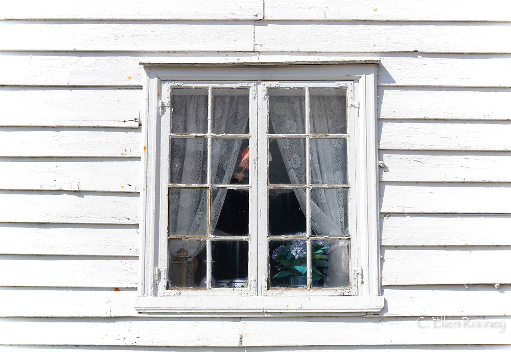 An old window with lace curtains in Solvorn on Lustra Fjord, Vestlandet, Norway