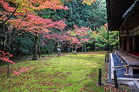 Japanese Maple and Autumn Colors at Koto-In Garden, Daitokuji -  Koto-in was established in 1601 by Tadaoki Hosokawa - a famous warrior under Toyotomi Hideyoshi, studied Zen under the Daitoku-ji abbot, Seigan, and was a disciple of tea master Sen no Rikyu. Koto-in is home to two famous tea houses, Shoko-ken and Horai.