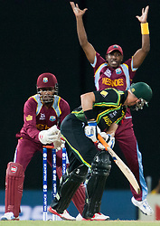 © Licensed to London News Pictures. 05/10/2012. Australian Michael Hussey survives a stumping chance during the World T20 Cricket Mens Semi Final match between Australia Vs West Indies at the R Premadasa International Cricket Stadium, Colombo. Photo credit : Asanka Brendon Ratnayake/LNP