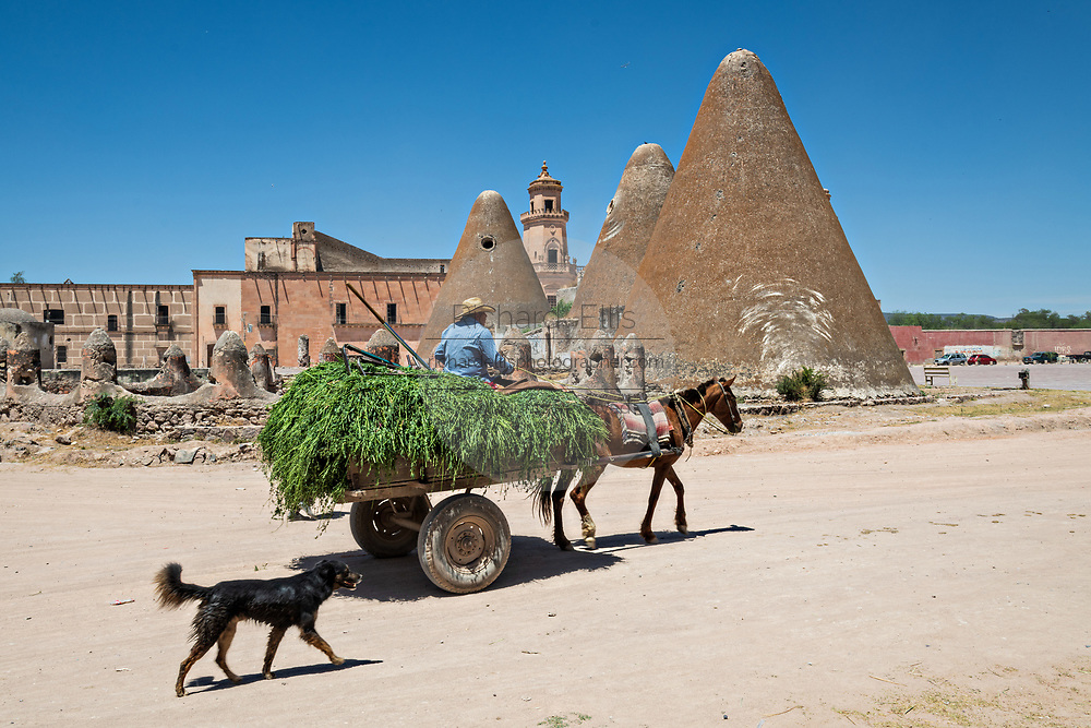A horse cart passes the pyramid shaped granaries and the front towers of the Hacienda de Jaral de Berrio in Jaral de Berrios, Guanajuato, Mexico. The abandoned Jaral de Berrio hacienda was once the largest in Mexico and housed over 6,000 people on the property and is credited with creating Mescal.