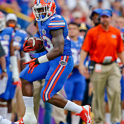 Oct 12, 2013; Baton Rouge, LA, USA; Florida Gators running back Mack Brown (33) against the LSU Tigers during the second half of a game at Tiger Stadium. LSU defeated Florida 17-6. Mandatory Credit: Derick E. Hingle-USA TODAY Sports