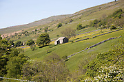 Attractive countryside in Langstrothdale, Yorkshire Dales national park, England, UK