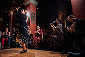 Preview   Voices Of Flamenco   Artsi   Fleisher Art Memorial   Contigo Photos and Films