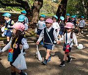"""Young kids in school uniforms parade through Shinjuku Gyoen National Garden, Tokyo, Japan. Shinjuku Gyoen originated during the Edo Period (1603-1867) as a feudal lord's Tokyo residence. Later it was converted into a botanical garden before being transferred to the Imperial Family in 1903 who used used it for recreation and the entertainment of guests. The park was almost completely destroyed during World War II, but was eventually rebuilt and reopened in 1949 as a public park. Access Shinjuku Gyoen park via three gates: Shinjuku Gate is a ten minute walk east from the """"New South Exit"""" of JR Shinjuku Station or a five minute walk from Shinjukugyoenmae Station on the Marunouchi Subway Line. Okido Gate is a five minute walk from Shinjukugyoenmae Station on the Marunouchi Subway Line. Sendagaya Gate is a five minute walk from JR Sendagaya Station on the local Chuo/Sobu Line."""