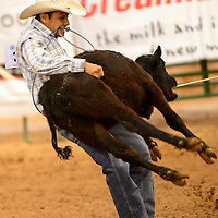 061313  Adron Gardner/Independent<br /> <br /> Jodan Mirabal grits his teeth to the lasso in the calf roping event during the Gallup Lions Club Rodeo at Red Rock Park Saturday.