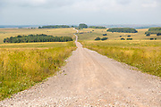 Unmade byway track road running west across Salisbury Plain towards Netheravon, Wiltshire, England, UK