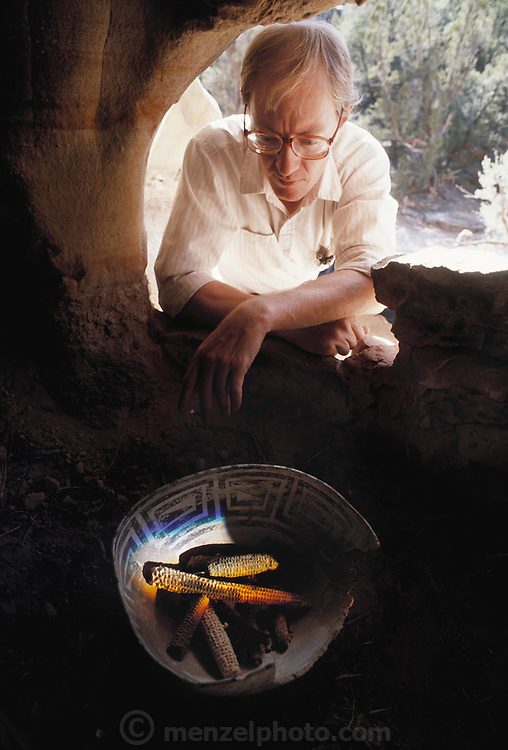(1992) Winston Hearst, who found Anasazi Indian corn in the Spirit Cave Ruins in Utah. The 1000-year-old corn was DNA fingerprinted and later matched to a genetically similar corn from Colorado. MODEL RELEASED.
