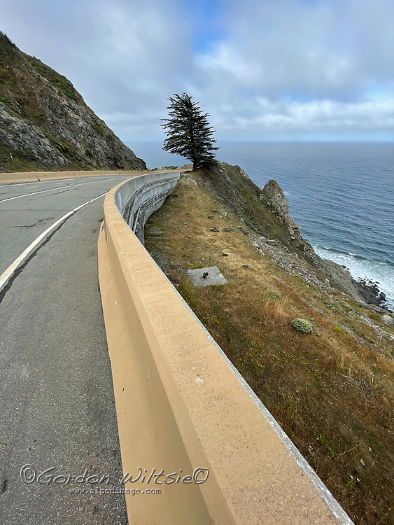 An abandoned section ofCalifornia Highway 1 winds through The Devils Slide south of San Francisco.