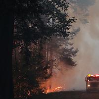 CZU August Lightning Complex burns in the  Bonny Doon at at Waddell Creek on Thursday.<br /> (Shmuel Thaler - Santa Cruz Sentinel)