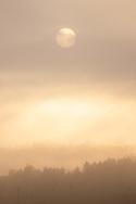 Morning fog on Oct. 21, 2020.