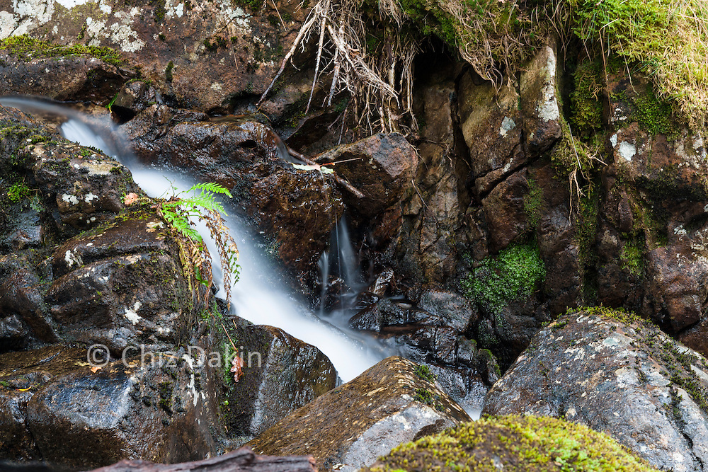 The path runs just to the left of this pleasant stream in the oak woodland near Stonethwaite