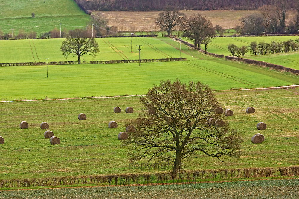 Oxfordshire countryside, England, United Kingdom