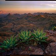 Sunset from the South Rim, Big Bend National Park. 4x5 Kodak Ektar 100. photo by Nathan Lambrecht