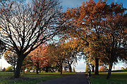Brockwell Park, just south of Brixton, on a sunny autumn afternoon