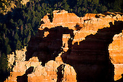 Overlook at Cedar Breaks National Monument in Southern Utah. Sunrise colors the Claron Formation of the Pink Cliffs.