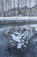 Ice bubbles and frost along the Birkenhead river near Pemberton, Coast Mountains British Columbia