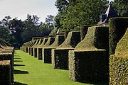 "Les Jardins de Manoir d""Eyrignac gardens, the Hornbeam Alley, at Salignac near Sarlat, Dordogne, France"