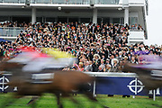 Spectators watch a sprint race during Epsom Derby day in southern England.