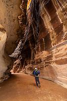A traveler walks through the Siq (a 1200 meter long gorge) in the Petra archaeological site, Jordan.