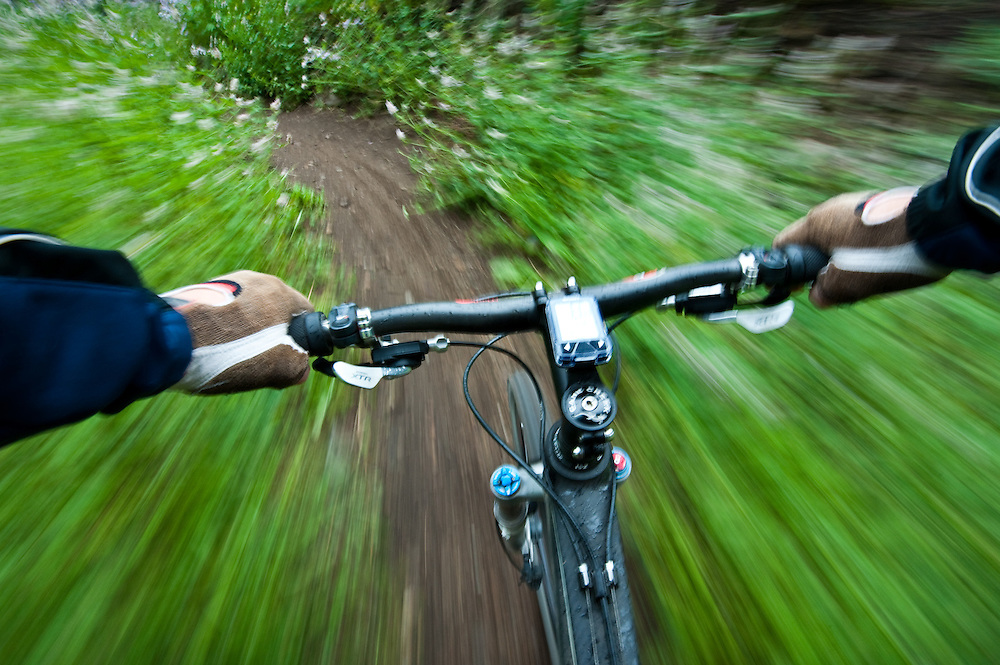 Mountain biker flies through wildflowers on a rainy Sun Valley Baldy Mountain trail system creating a motion blur through shutter and bike speed MR. Licensing and Open Edition Prints