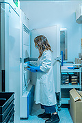 Siena, Mad Lab, Fabiola Vacca taking the 3 selected MAbs (Monoclonal Antibodies) stored in the freezer (-80°C)