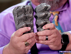 March 27, 2019 - Hemet, California, U.S. - Western Science Center Director Alton Dooley holds up replicas of Mastodon teeth fossils to show the difference in sizes between the American Mastodon, on the left, and the newly discovered Pacific Mastodon, on the right, during a press conference at the Western Science Center in Hemet on Wednesday, March 27, 2019. (Credit Image: © Jennifer Cappuccio Maher/SCNG via ZUMA Wire)