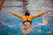 Vashon Seals Swim Team January Challenge