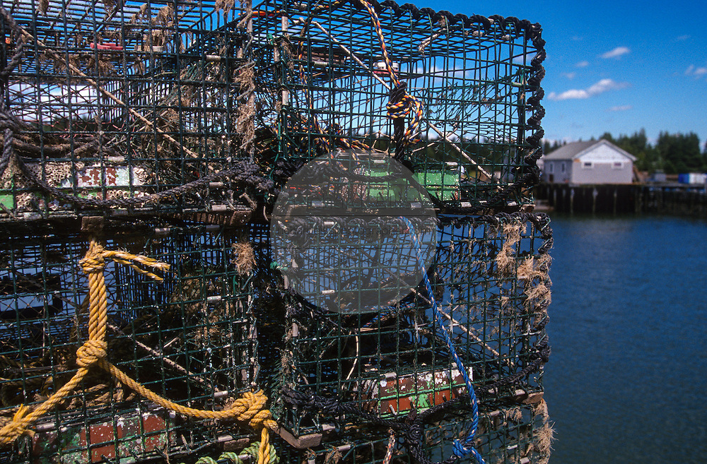 Lobster buoys and traps on a dock in Tenants Harbor, Maine.