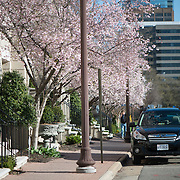 A street scene in Rosslyn, Arlington, Virginia, just across from the Iwo Jima Memorial.