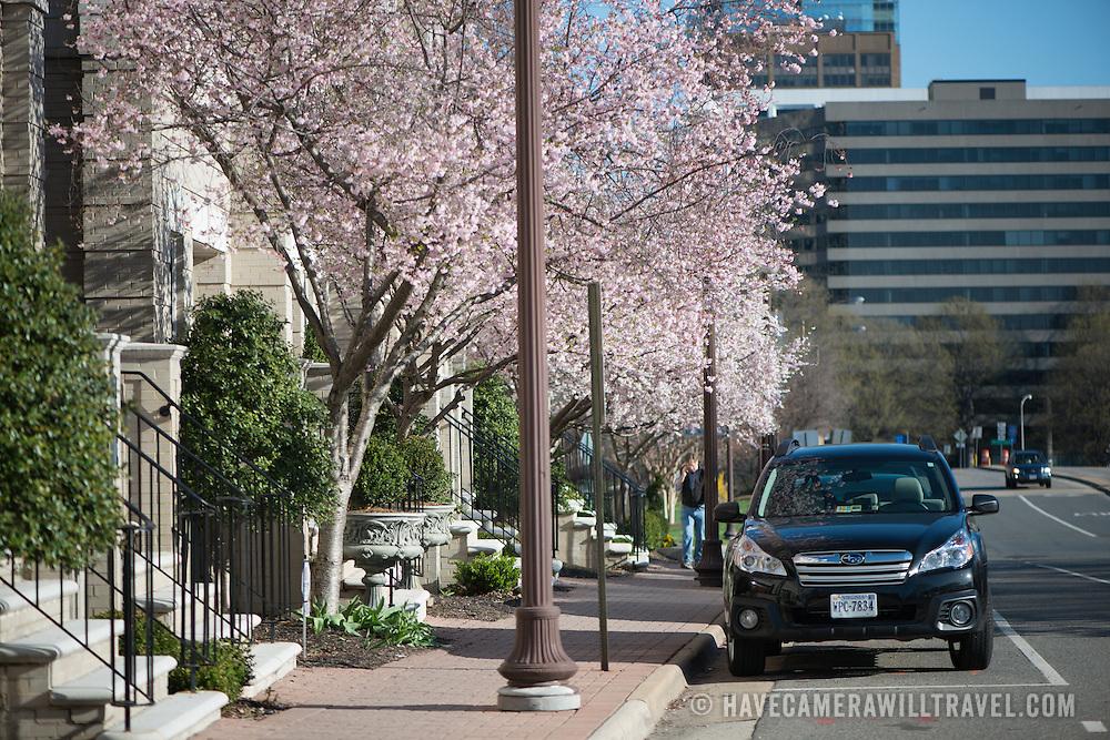 A street scene in Rosslyn, Arlington, Virginia, just across from the Iwo Jima Memorial.