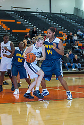 28 December 2010: 2010 State Farm Holiday Basketball Classic,  Normal Community West Wildcats v Chicago John Hope Lady Eagles, Girls