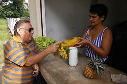 Buying vegetables from shop at Organiponico 14 de junio; Pinar del Rio; Cuba,
