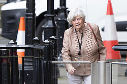 © Licensed to London News Pictures. 03/03/2020. London, UK. Former MEP Ann Widdecombe departs The Houses of Parliament. Photo credit: George Cracknell Wright/LNP