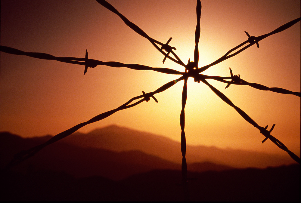 Limited Edition Print of 48    Sunset silhouettes star shaped barb wire at the top of Muldoon Canyon near Bellevue in Central Idaho