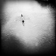 Rowing on the Main in Frankfurt, Germany