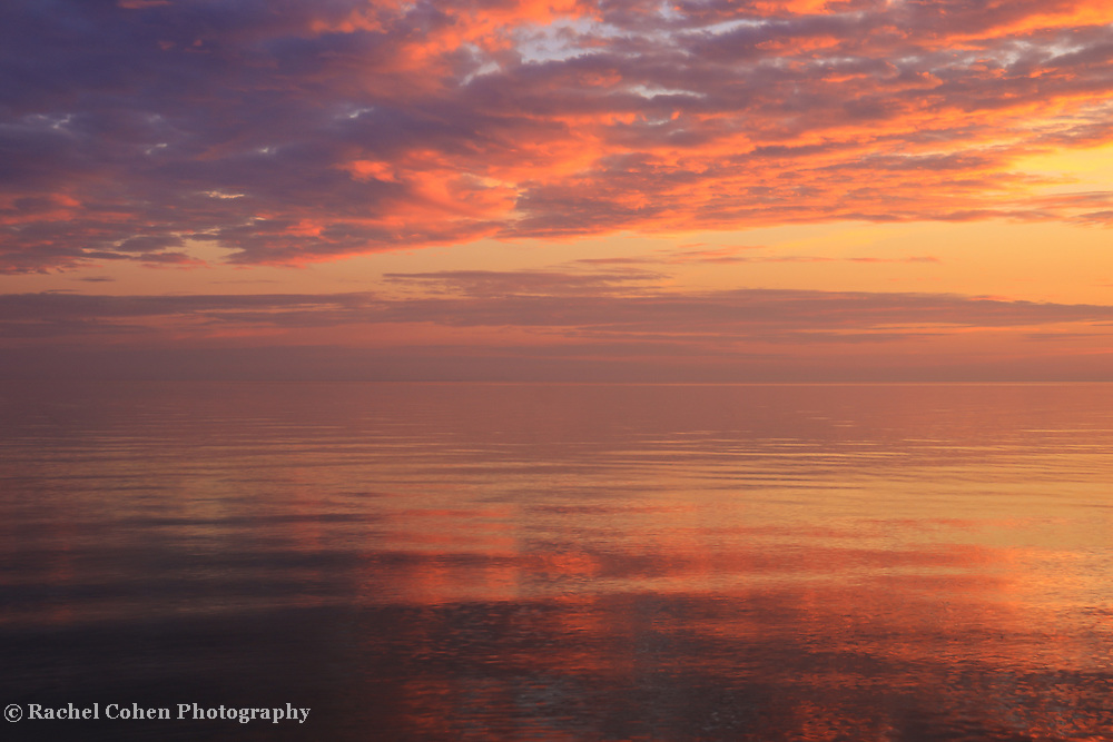 """""""Spectacular Sunset""""<br /> <br /> A gorgeous sunset in hues of pink, gold, purple, yellow, and blue over Lake Michigan!"""