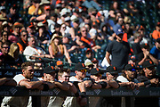 The San Francisco Giants watch from the dugout during a game against the Los Angeles Dodgers at AT&T Park in San Francisco, California, on April 27, 2017. (Stan Olszewski/Special to S.F. Examiner)