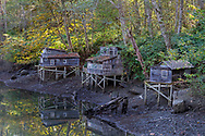 These models at the Maplewood Flats Conservation Area are an art installation by world renowned artist Ken Lum.  Originally displayed in Vancouver during the 2010 Winter Olympics, the display is now at the mud flats.  The piece is modeled after squatters shacks that were built on stilts at the Maplewood mudflats before their removal in 1971.