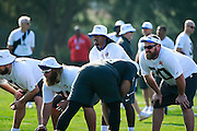 January 28 2016: Buffaloe Bills quarterback Tyrod Taylor during the Pro Bowl practice at Turtle Bay Resort on North Shore Oahu, HI. (Photo by Aric Becker/Icon Sportswire)