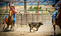 Horses and riders compete in the Big Sky Country State Fair at the Gallatin County Fairgrounds in Bozeman, Montana.